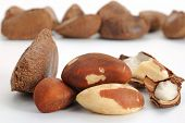 foto of brazil nut  - Close - JPG