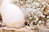 stock photo of dainty  - Three plain white undecorated Easter eggs nestling in a straw nest with a delicate dainty spray of Babys Breath flowers to celebrate springtime and the Easter holiday - JPG