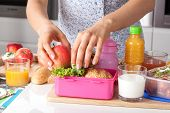 stock photo of tomato sandwich  - Young woman making school lunch in the morning - JPG