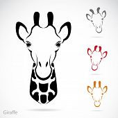 Vector Image Of An Giraffe Head