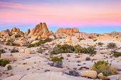 foto of arid  - Joshua Tree National Park - JPG