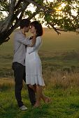 image of sweetheart  - Couple sweethearts kissing under tree at summer - JPG