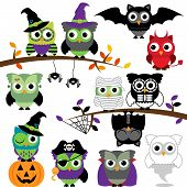 stock photo of warlock  - Vector Collection of Spooky Scary Halloween Owls - JPG