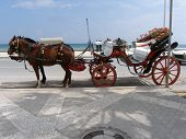 picture of stagecoach  - horses waiting for tourists - JPG