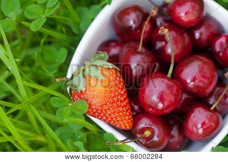 Cherries And Strawberry In A Ceramic Bowl On Green Grass
