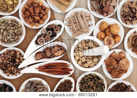 Chinese herbal medicine selection in white china dishes and mortar with pestle.