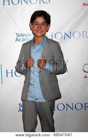 LOS ANGELES - JUN 1:  Blake Garrett Rosenthal at the 7th Annual Television Academy Honors at SLS Hotel on June 1, 2014 in Los Angeles, CA