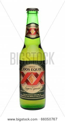 Single Dos Equis Bottle