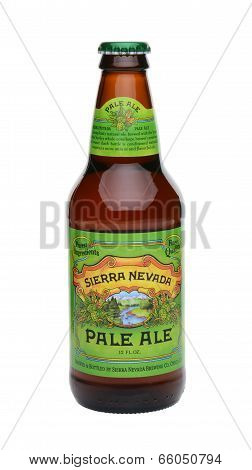 Single Sierra Nevada Pale Ale Bottle