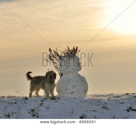Snowman And Dog In Winter