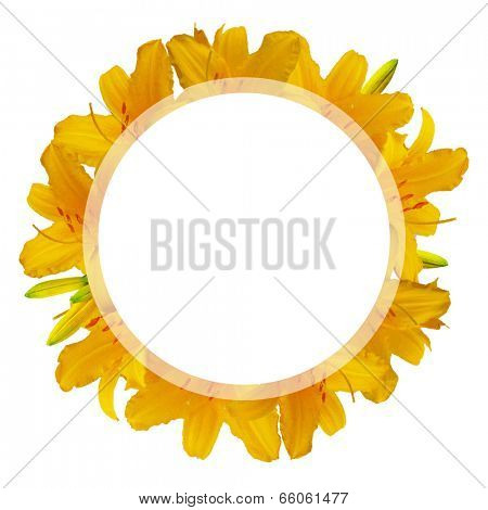 Summer Lilies Banner, Isolated On White Background, Vector Illustration