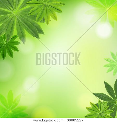 Leaves Border, With Gradient Mesh, Vector Illustration