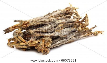 Dried Fish Of Bombay Duck