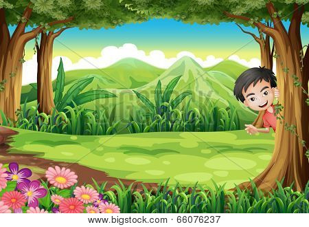 Illustration of a smiling boy playing hide and seek at the forest