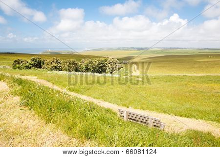 Beachy Head, View Of The Road And Seven Sisters Cliffs, East Sussex, English South Coast