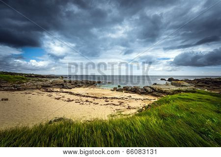 Dramatic coastal landscape with contrasting gray sky and green grass