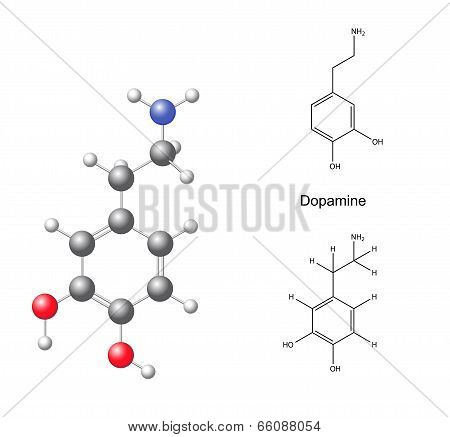 Structural Chemical Formulas And Model Of Dopamine