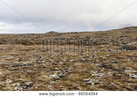 Volcanic Landscape At Snafellsnes Peninsula.