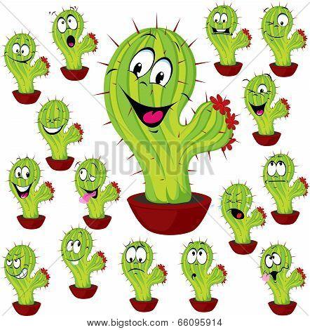 Cactus Plant Vector Illustration