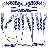 foto of corn stalk  - Ears of wheat and rye  icon  set vector  illustration - JPG
