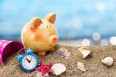 picture of sand dollar  - Piggy bank on sand with summer sea background - JPG