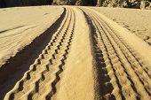 picture of track home  - tyre tracks on the desert in jordan - JPG
