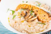 foto of truffle  - a delicious risotto with salmon and truffled mushroom - JPG