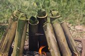 Постер, плакат: Glutinous rice roasted in bamboo joints on a campfire Thai food