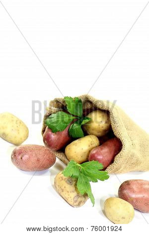 Yellow And Red Potatoes In The Bag