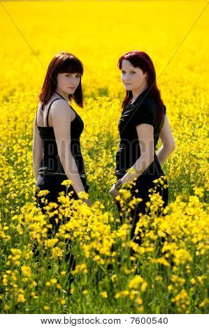 Twin sisters on yellow field