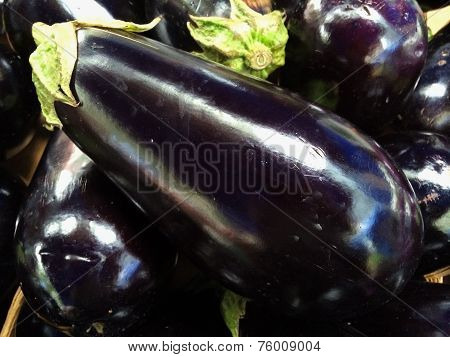 Pile of freshly picked eggplants at the farmers Market
