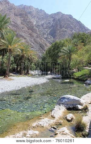 Warm Springs Of Ain A'thawwarah