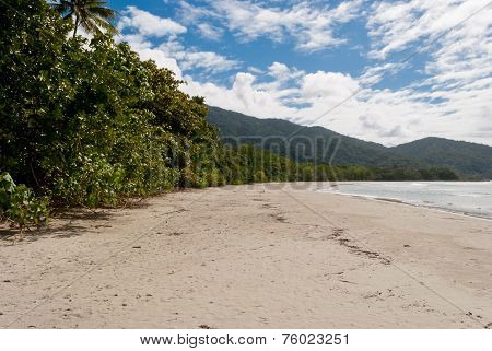 Cape Tribulation Beach, Queensland, Australia
