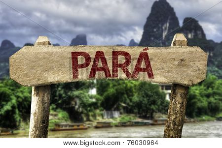 Para (Brazilian State) sign with a forest background