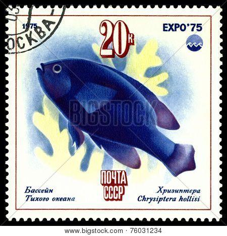Vintage  Postage Stamp.  Chrisipther.