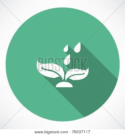leaf with falling drops icon