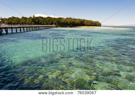 Paradise Tropical Island (green Island, Queensland, Australia)