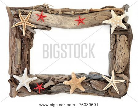 Starfish shells and driftwood forming an abstract frame over white background.