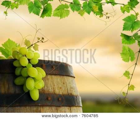 Wine barrel with grape and grapevine