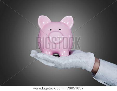 Waiter's Hand Holding Piggy bank Over Gray Background