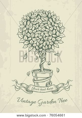 Hand drawn vintage garden tree in the pot with falling leaves and ribbon. Eps10 vector illustration