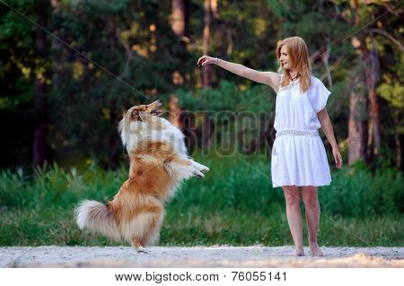 Young beautiful girl in white dress playing with her dog collie on a background of forest