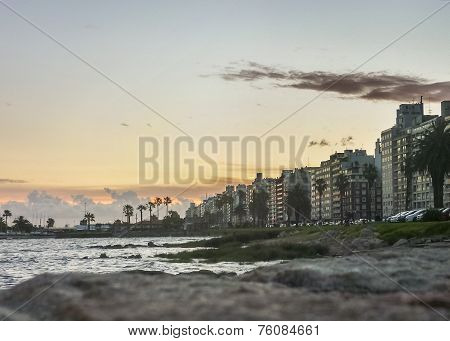 Montevideo Buildings And Coast View