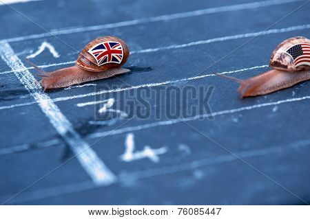 Snails Race Metaphor About England Against Usa