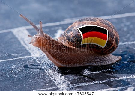 Finish Line Winning Of A Snail With The Colors Of Germany Flag