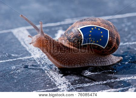 Finish Line Winning Of A Snail With The Colors Of Europe Flag