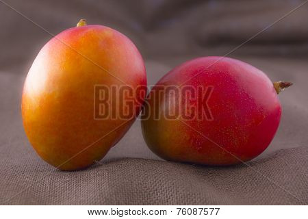 Mango Fruit Isolated On Brown Background