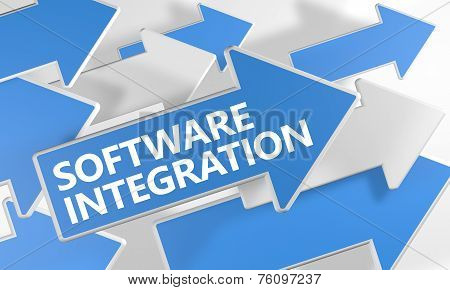 Software Integration