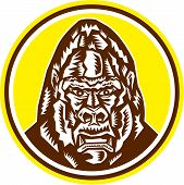 stock photo of ape  - Illustration of an angry gorilla ape head set inside circle on isolated background done in retro woodcut style - JPG