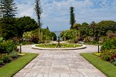 stock photo of royal botanic gardens  - Government House Gardens Botanic Gardens in Sydney